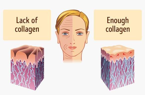 تامین کلاژن بدن